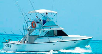 Deep-Sea-Fishing-In-Cancun-Bertram-33