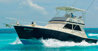 Deep-Sea-Fishing-In-Cancun-Viking-Deluxeo-41