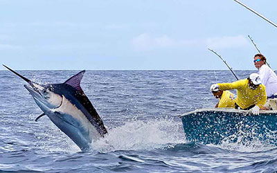 Deep-Sea-Fishing-In-Cancun-White-Marlin-4